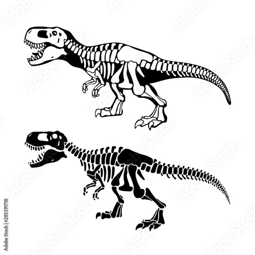 T rex dinosaurs bones negative space silhouette illustrations set Wallpaper Mural