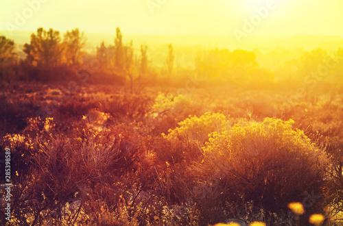 Fototapeta Autumn season obraz na płótnie