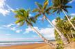 canvas print picture Tropical beach