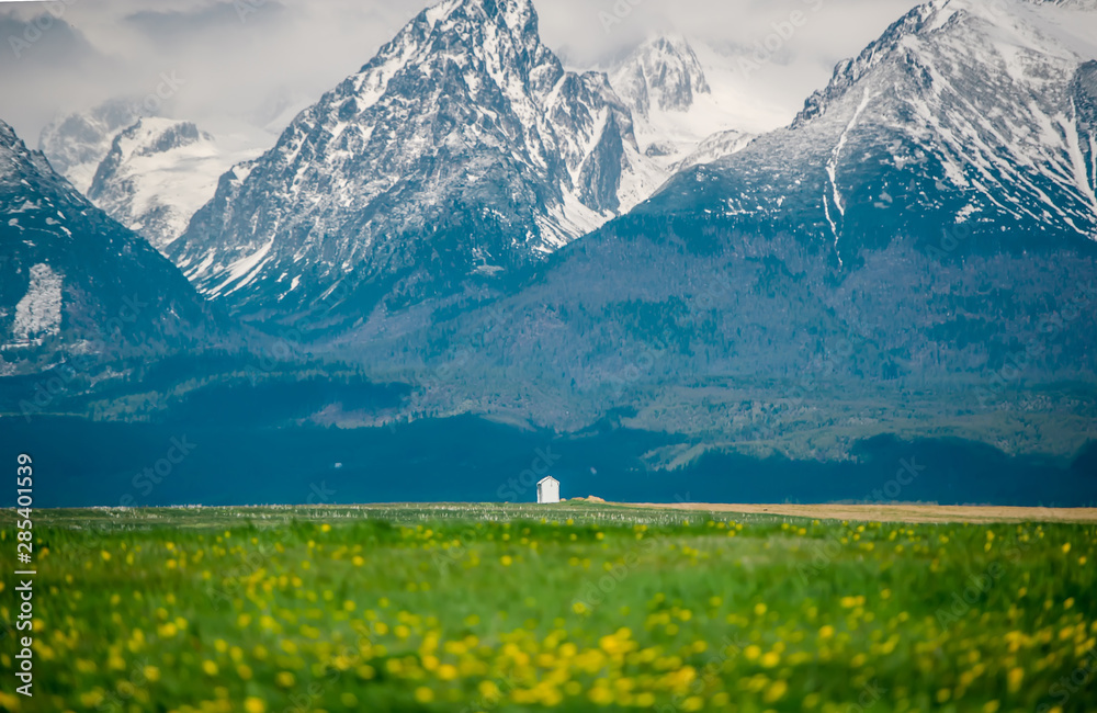 Fototapety, obrazy: Green fields and meadows in Slovakia under mountains