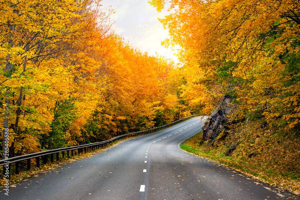 Fototapety, obrazy: Fall scenic road in Sweden