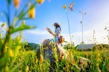 Woman Girl Enjoy Reading Book On The Timber Log Middle Of Wildflowers Field, Open Arm Cheerfully In The Air Pleasantly Day