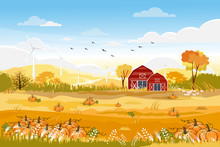 Landscapes Of Countryside In Autumn,Rural Illustration Of Mid Autumn With Farm Field, Winddmill Pumpkins, Wild Flowers And Barn In Yellow Foliage.Seasonal Harvest Banner