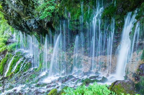 Aluminium Prints Dark grey 夏の乗鞍高原 岩から迸る湧水の滝