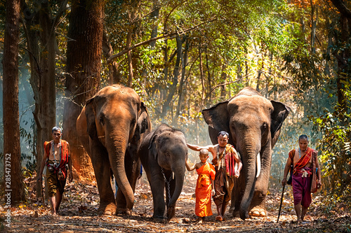Photo  Elephant mahout portrait