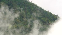 Foggy Smooth Movements Beside The Rainforest Mountain.