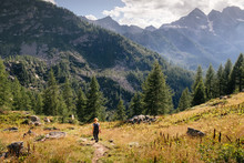 Mountain Landscape. Woman Hiking Sense Of Freedom On The Path. Conifer Of Fir And Larch, Mountain Range In Background. Italian Alps , Gran Paradiso National Park, Ceresole Reale Lake, Piedmont, Italy