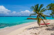 Caribbean Guadeloupe Beach Coc...
