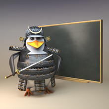 3d Penguin Samurai Warrior In Full Armour Teaching At The Chalkboard, 3d Illustration
