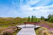 Ausblick auf die Heide, Insel Amrum