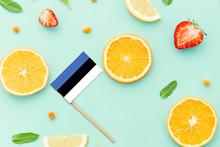 Estonia Paper Stick Flag. National Summer Fruits Concept, Local Food Market. Vegetarian Theme.