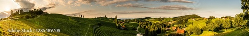 Foto op Aluminium Honing Panorama view of Vineyards in summer in south Styria, Austria tourist spot, travel destination.