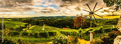 Fotografía  Panorama view of Vineyards in summer in Slovenia