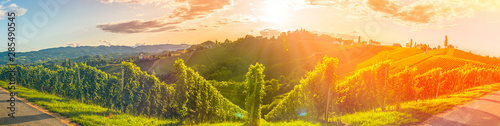 Garden Poster Vineyard Panorama view of Vineyards in summer in south Styria, Austria tourist spot, travel destination.