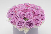 Roses In A Hat Box On A White Background Isolated