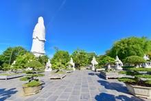 Bonsai Garden And Giant White ...