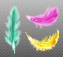 Color Fluffy Feathers Vector Realistic Set Isolated On Transparent Background. Yellow Green Pink Soft Feathers From Wings Of Tropical Birds Or Angel, Symbol Of Softness And Purity, Design Element
