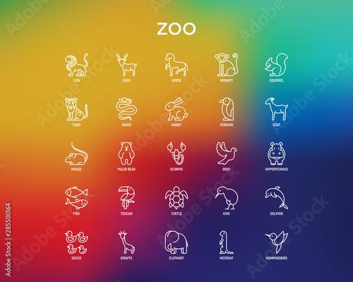 Zoo thin line icons set: lion, deer, horse, monkey, tiger, penguin, hippo, giraffe, elephant, turtle Wallpaper Mural
