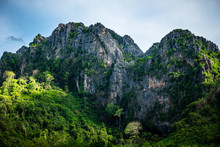Mountain In Tropical Forest (N...