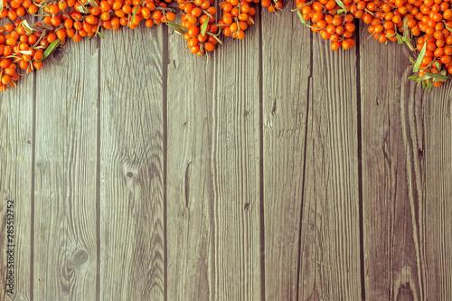 Carta da parati  A sea buckthorn berries  on a dark wooden background