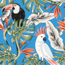 Toucans, Parrots, Strelitzia Flowers, Monstera Palm Leaves, Blue Background. Vector Floral Seamless Pattern. Tropical Illustration. Exotic Plants, Birds. Summer Beach Design. Paradise Nature