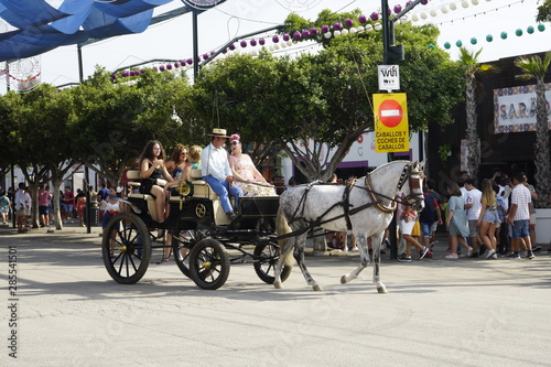 фотография horse carriage concurso de enganches de carruajes de coches de caballos feria de