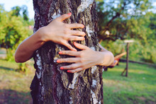 Close Up On Hands Of Young Woman Hugging Embracing Tree Trunk In Her Backyard At Home Nature Hug