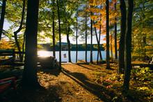 American Flag In Woods By Lake...