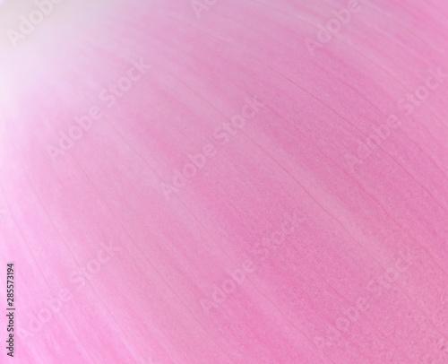 Montage in der Fensternische Lotosblume Pink background, closeup lotus petal.
