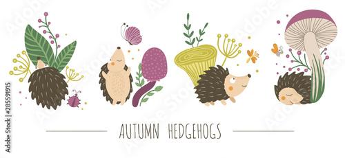 Fotografia Vector set of scenes with hand drawn flat hedgehogs