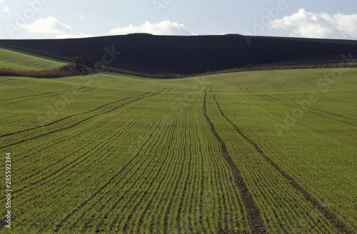 Poster Melon Aerial shot of a grassy field with a mountain in the distance at Wiltshire, UK