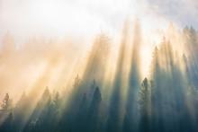 Sun Light Through Fog And Clou...