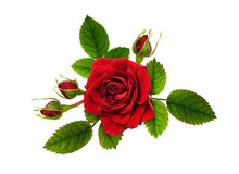 Red Rose Flowers In A Floral Arrangement