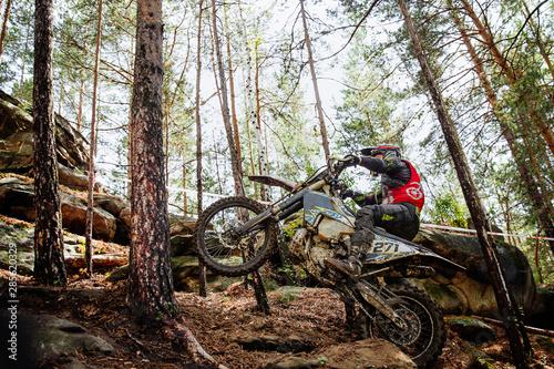 Fotografie, Obraz athlete racer motocross enduro riding uphill in forest trail