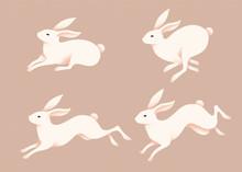 Lovely Jumping White Rabbits