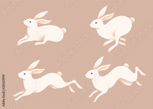 Photo Lovely jumping white rabbits