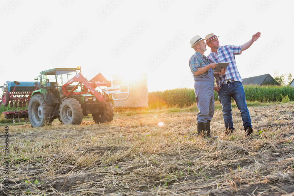 Fototapety, obrazy: Senior farmer showing digital tablet to coworker in field with yellow lens flare in background