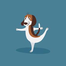 Funny Beagle Doing Ballet, Hap...
