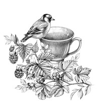 Cup Of Berry Tea And Goldfinch