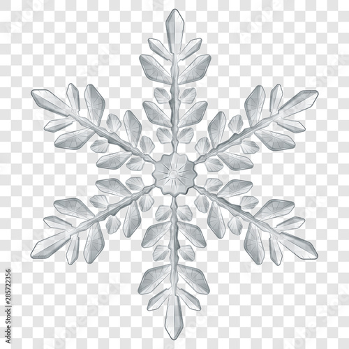 Big complex translucent Christmas snowflake in gray colors for use on light background. Transparency only in vector format Wall mural