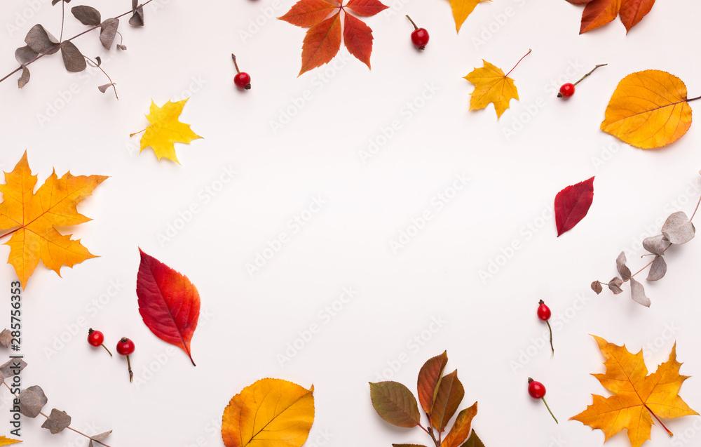 Fototapety, obrazy: Bright summer background with round frame for logo on white