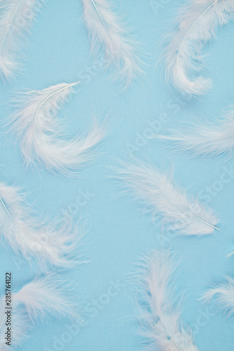 Deurstickers Zwaan Gentle soft white feathers pattern over pastel background