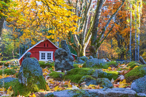 Red shed in a park with autumn colors