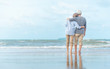 canvas print picture - Beautiful happy elderly couple rest at tropical resort,back view