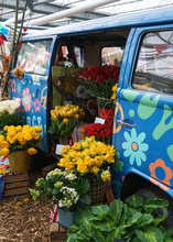 Vintage Car Flowers Ecology Green Concept Vehicle Garden Installation