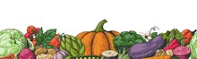 Hand Drawn Veggies. Colored Ve...
