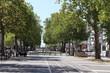 """Mail """"François Mitterrand"""" - Rue et allées bordées d'arbres dans la ville de Rennes - Département Ile et Vilaine - Région Bretagne - France"""