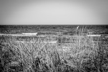 The Beach Of The Baltic Sea Wind And Swell