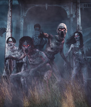 Zombies Awaken,Undead From A L...