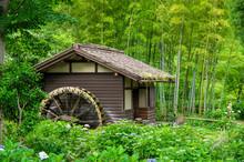 森と水車小屋